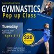 Gymnastics Pop Up Class image