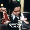 ADDAMS FAMILY VALUES (PG) image