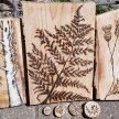 Pyrography In the Woods image