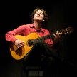 Intro to Flamenco Guitar Workshop with Andreas Arnold image