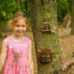 After School Forest Club (4-8 year olds) image