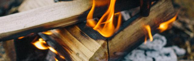 Wild Game Bonfire Feast