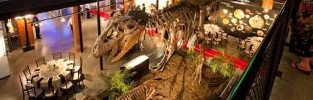 Rotary Night at the Museum of Natural Science