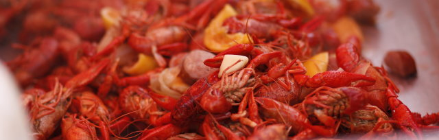 2021 Crawfish Cookin' For A Cause