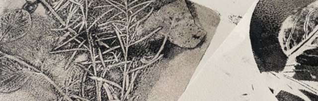 DO Try This at Home! Botanical Printmaking with Old Stores Studio CIC