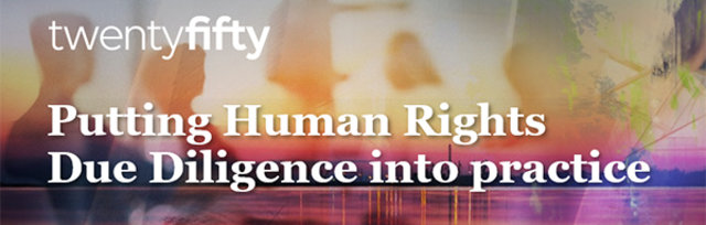 Putting Human Rights Due Diligence into practice