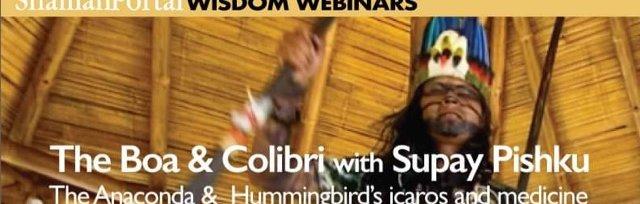 The Boa & Colibri with Supay Pishku - The Anaconda & Hummingbird Amazonian tradition