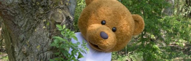 Teddy bear's picnic at Monkton