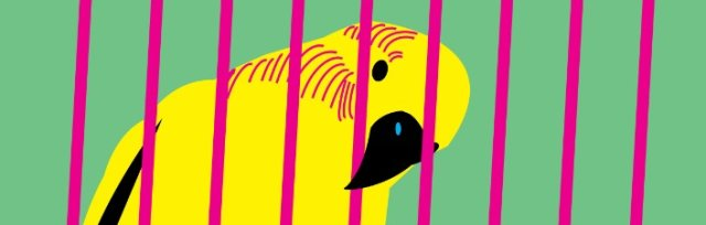 Cage - A showcase of short family-friendly animal plays.