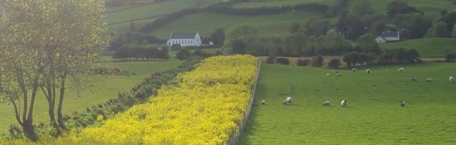Farming For Nature Walk with Boyd Bryce - May (Co.Donegal)