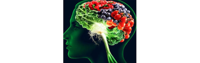 AUG. 13, Friday: Nutrition and Brain Function, 7–8:30 pm ET / 4–5:30 PT