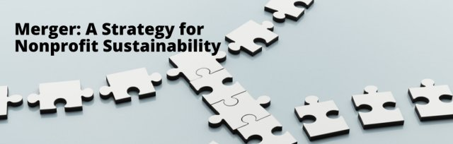 Merger: A Strategy for Nonprofit Sustainability