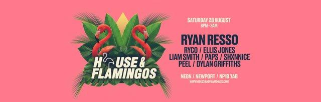 Part V: House & Flamingos at the Neon