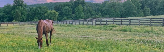 Maryland Horse Council Bond Bill Webinar