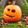 Little Explorers Halloween Special image