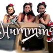 St Ives September Festival :  'The Hummingbirds' image