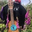 St Ives September Festival : St Ives Arts Club : 'Songs Of Rebellion & Rewilding' image