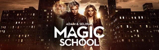 Magic School - Introductory Magic (Level One)   Term 2