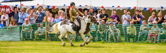 The 59th Cattistock Countryside Show 2021