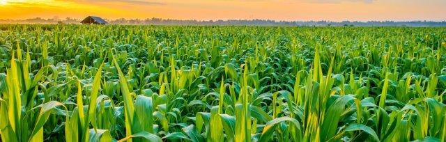 AgriTech 4.0 - Crops, Seeds & Soil (CSS) 2021