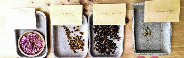 Botanical inks from the Garden Workshop [Ref:#5282]