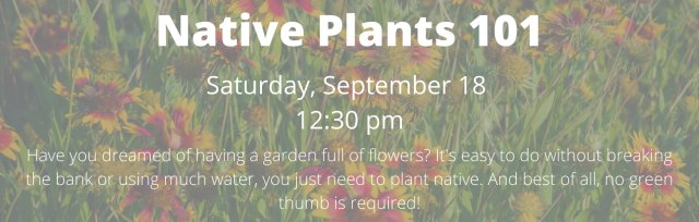 Native Landscaping 101 Series: Native Plants 101