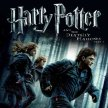 """Harry Potter and the Deathly Hallows – Part 1 - """"Cinema In The Woods - Lime Lane image"""