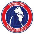 Hampton & Richmond v Dorking Wanderers image