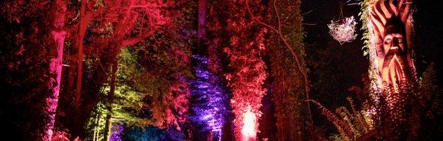Land of Light Sensory Evening