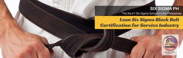 "Lean Six Sigma Black Belt Certification Program (Wave 8) by Rex ""The Six Sigma Guy"""
