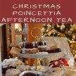 Christmas Poincettia Tea image