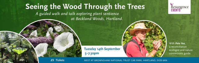 Seeing the Wood Through the Trees – a guided walk and talk with Pete Yeo at Brownsham, Hartland