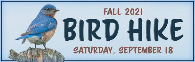 Fall Bird Hike
