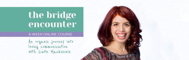The Bridge Encounter - an organic journey into loving communication