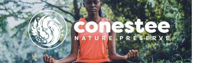 Yoga and Meditation (3rd Sundays)
