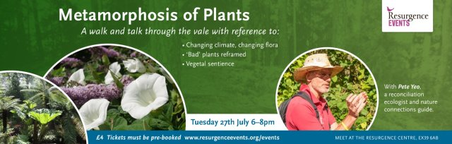 Metamorphosis of Plants – a walk and talk through The Vale in Hartland with Pete Yeo