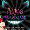 Alice In Wonderland Pantomime image