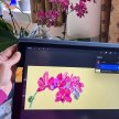 iPad Procreate Drawing Course with Isabel Carmona [Ref #477#5194] image
