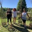 Plant Support Workshop @ BWAS image