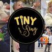 TINY Sing Rayleigh image