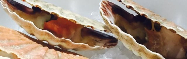 A celebration of Mylor Harbour Shellfish