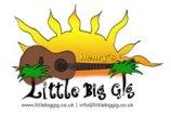Little Big Gig