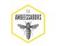 The Ambeessadors