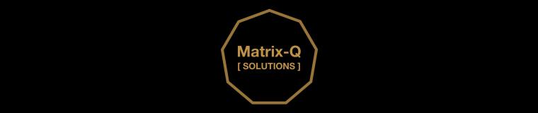 Matrix-Q Solutions