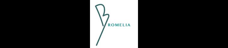 Bromelia Travel   Brazil Travel Specialists