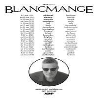 BLANCMANGE image