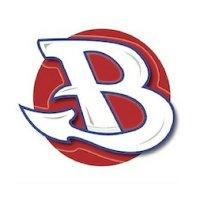 Burlington Blankets image