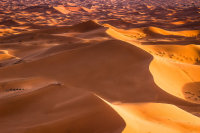 The Sahara Yoga & Creative Voice/Dance Retreat 2022 image