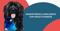ANAESTHESIA & ANALGESIA FOR PRACTITIONERS Standard course image