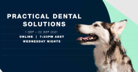 Practical Dental Solutions image